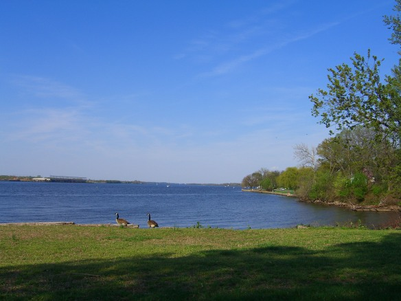 This is the view from the Toy-Morgan House looking north at the Delaware River